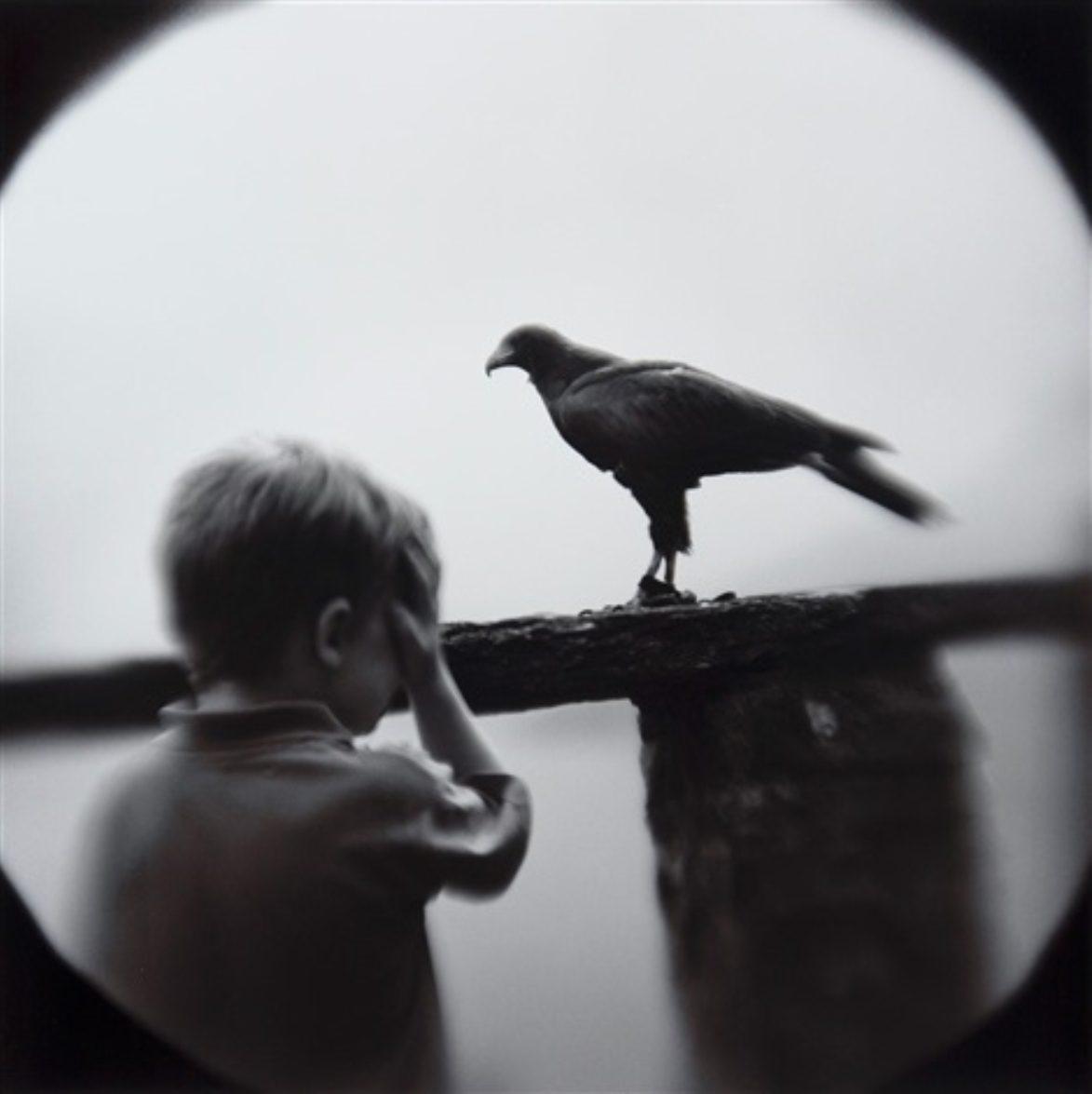 Boy with Hawk