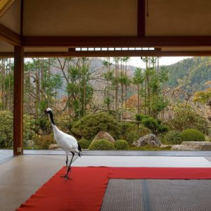 Journey to the Great Sage, Jikko-in Temple, Ohara