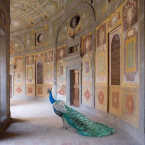 Heaven's Vault, Villa Farnese, Caprarola (Metamorphoses)