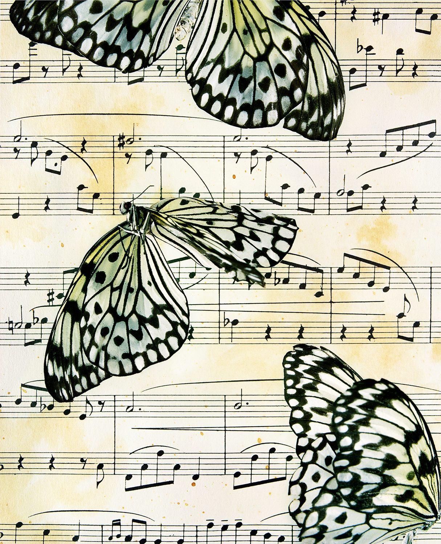 Musical Mimicry, Idea Leuconoe