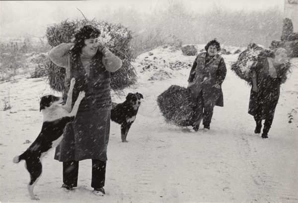Cooperative Women from Village Racovitca, Bulgaria