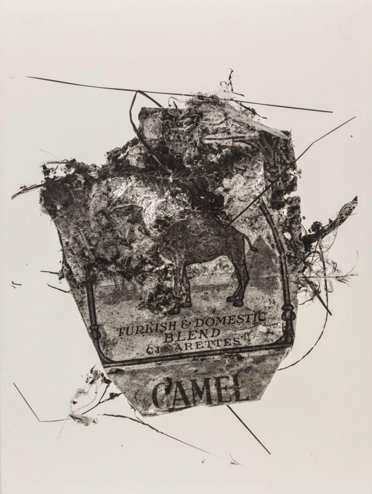 Camel Pack, New York