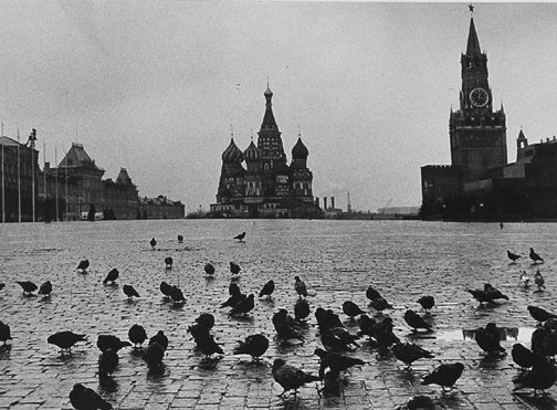 Red Square with pigeons