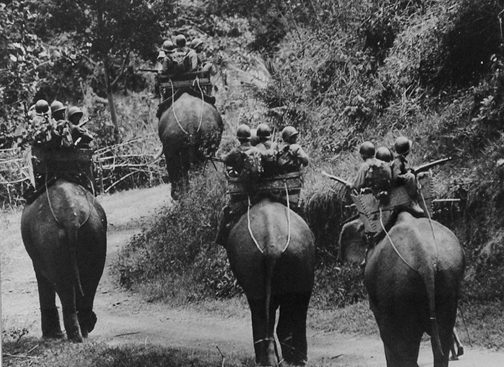 Elephants Carrying Soldiers, Vietnam