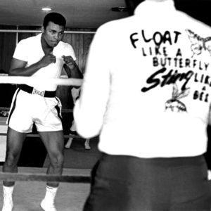 Ali Float Like a Butterfly, Miami