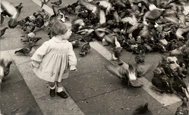 Girl with Pigeons, St. Marks Square, Venice, Italy