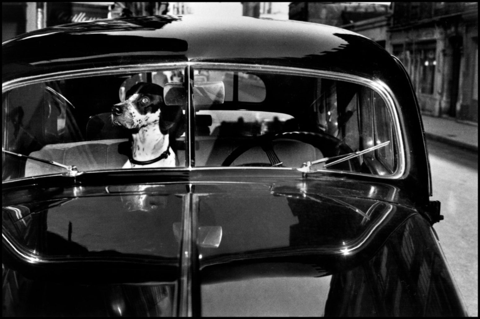 Paris, France (dog in car)