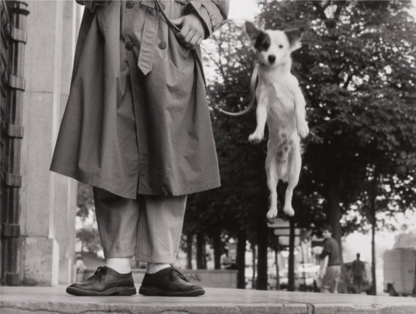 Paris, 1989, (dog jump)