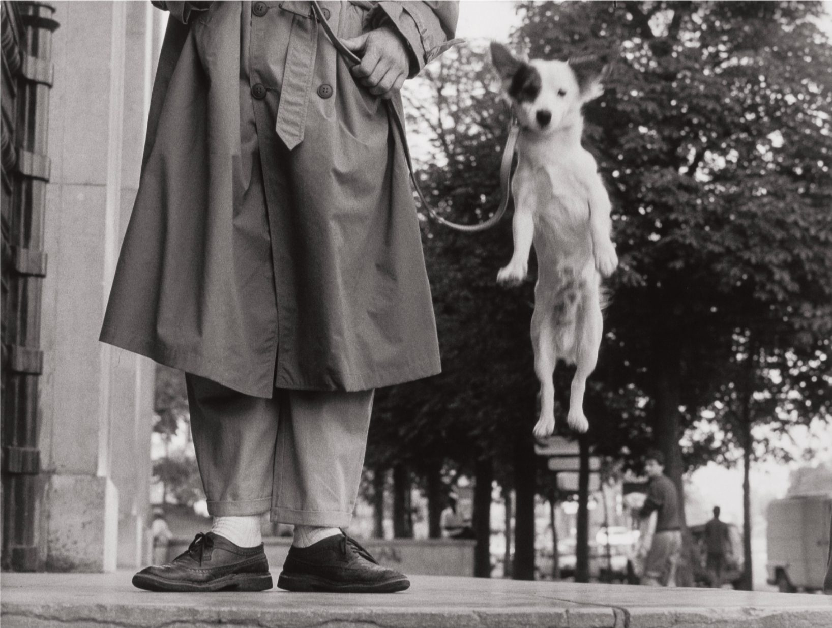 Paris, 1989, (dog jump)