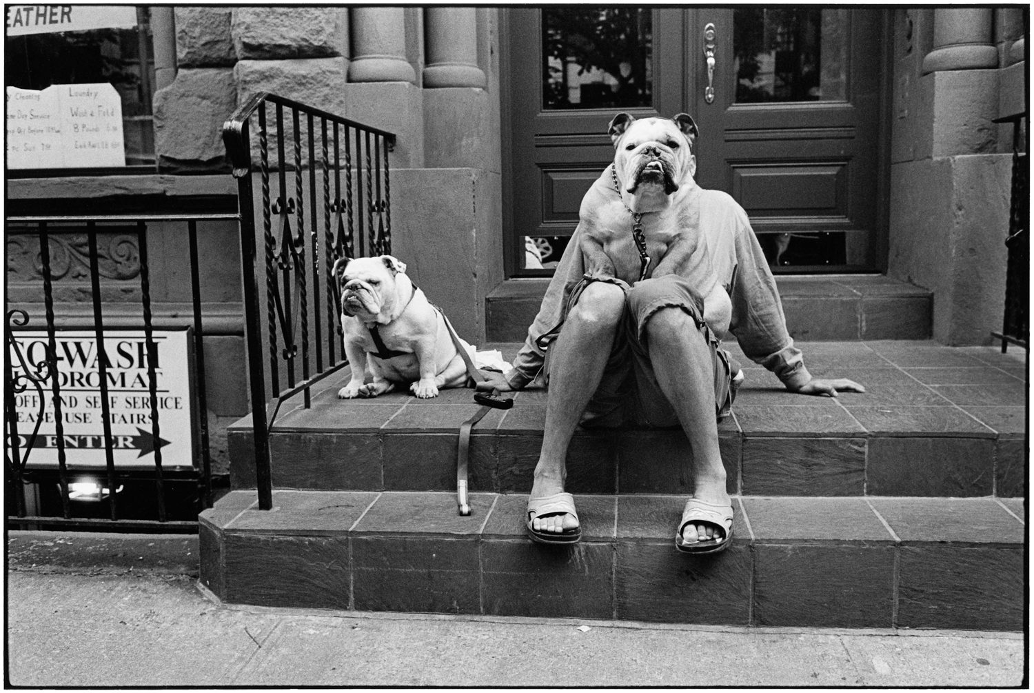 New York City, 2000 (Bulldogs)
