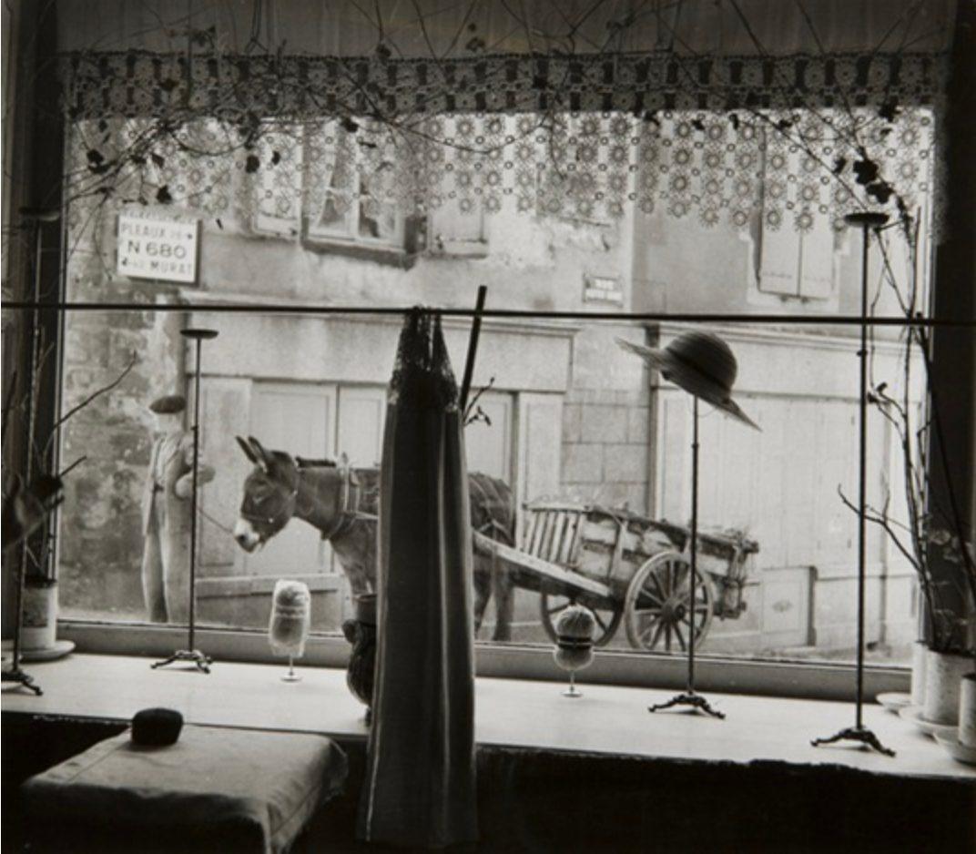 Vitrine, Salers, France 1954