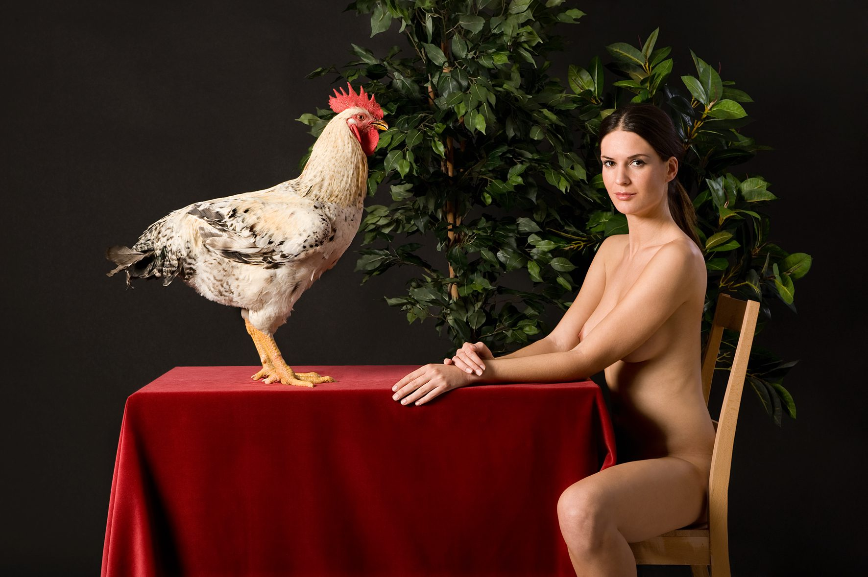 Untitled, For a Definition of The Nude Series (Woman w/ Rooster)