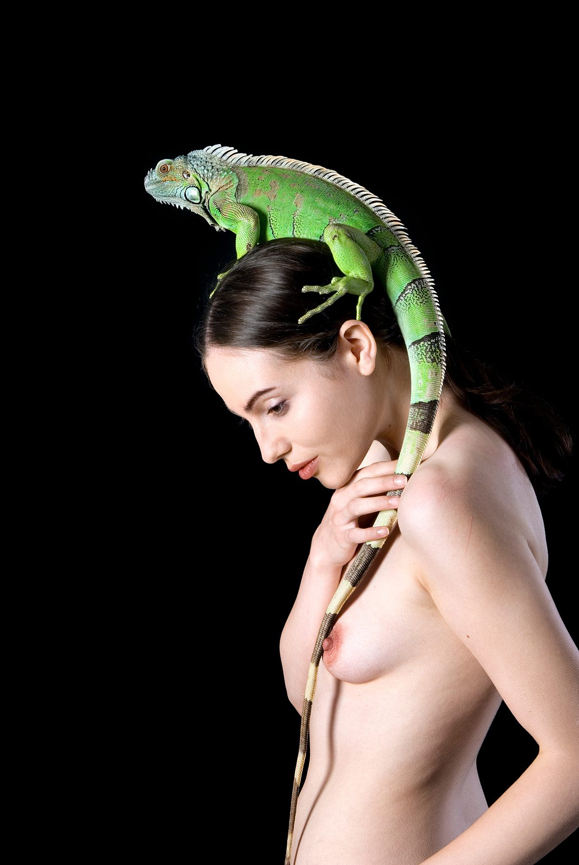 Untitled, For a Definition of The Nude Series (Woman w/ Iguana profile)
