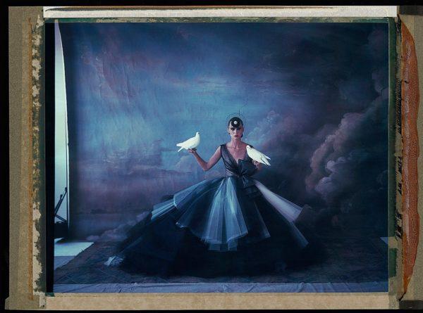 L'arche de Noe VIII, Dior (Tracey Hat), Haute Couture, Summer 2012