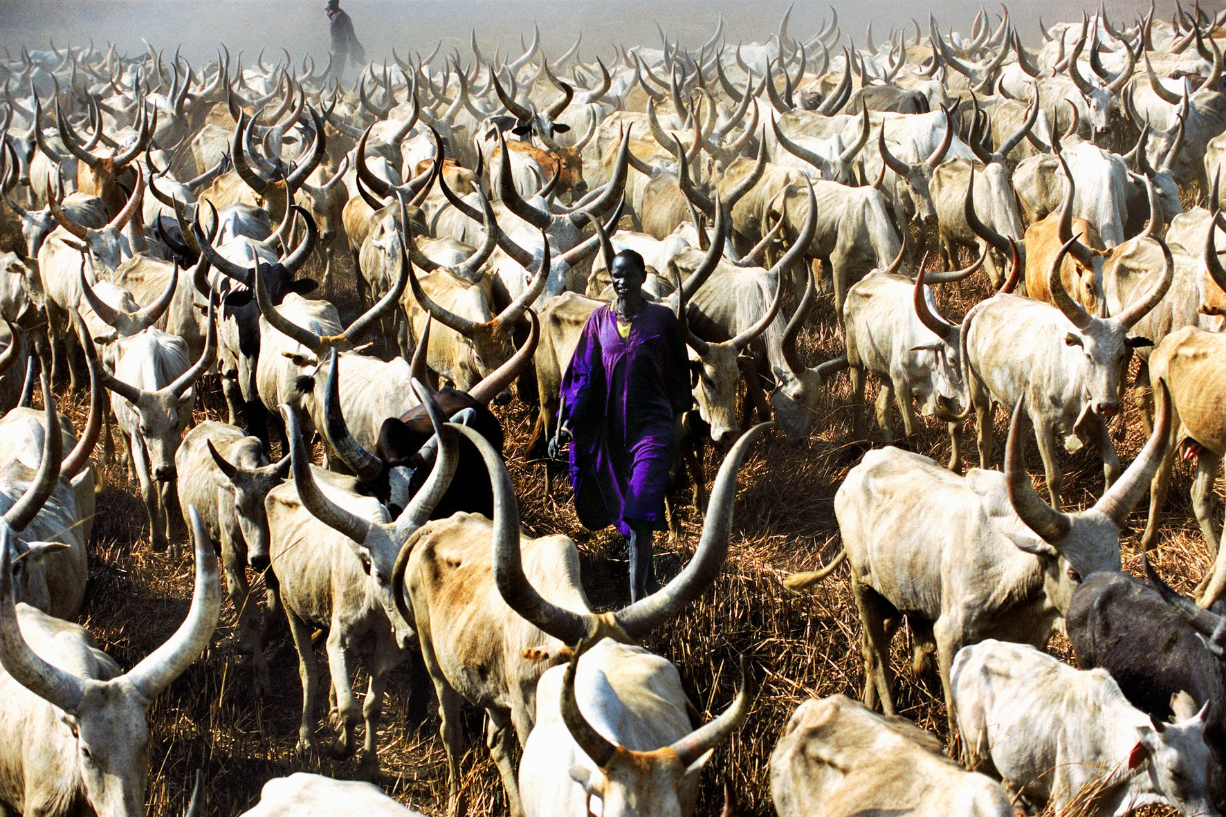 Dinka Herder with Purple Robe, South Sudan