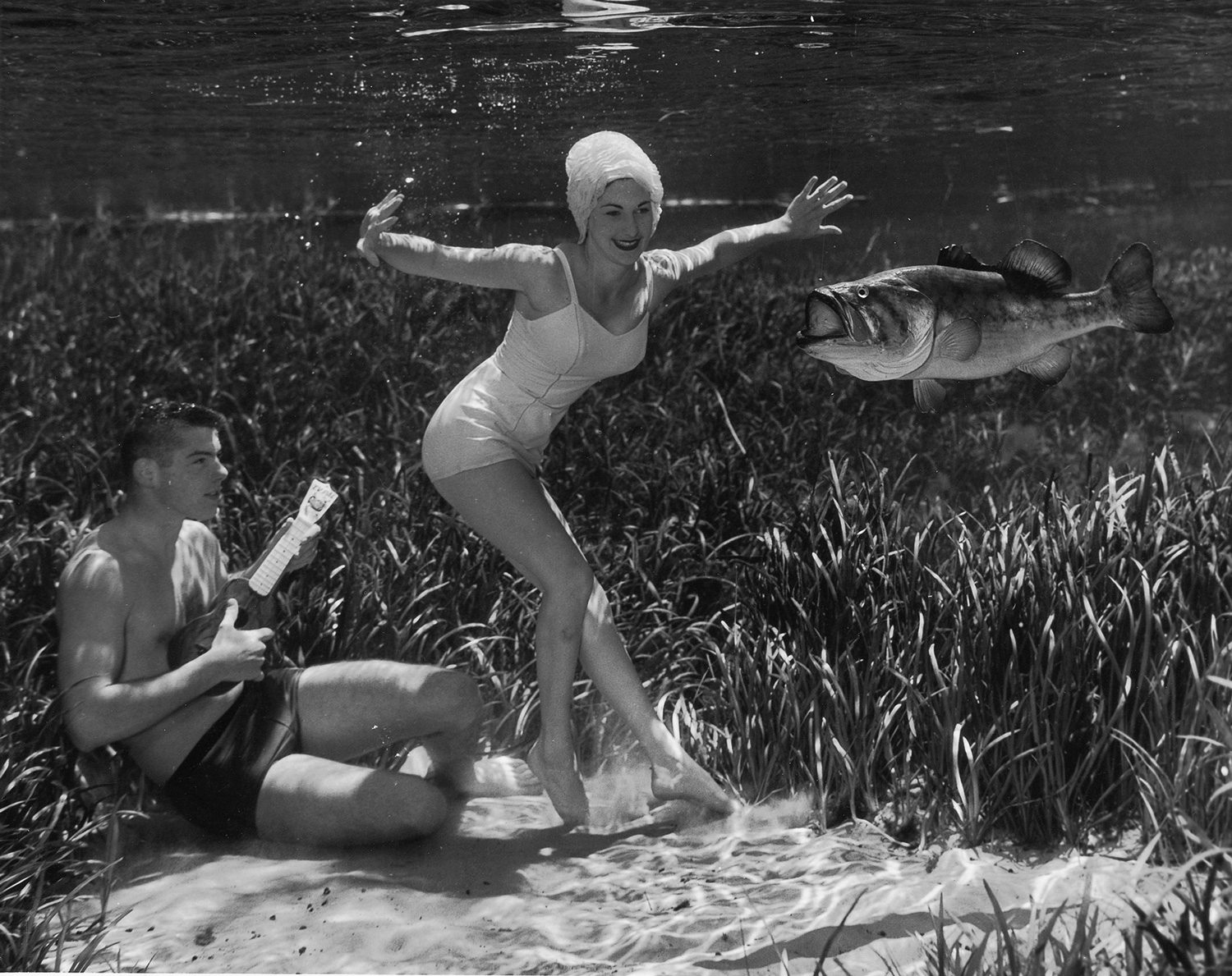 Silver Springs Underwater (Music and Dancing with Fish)
