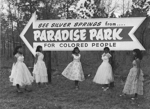 Silver Springs Underwater (Paradise Park)