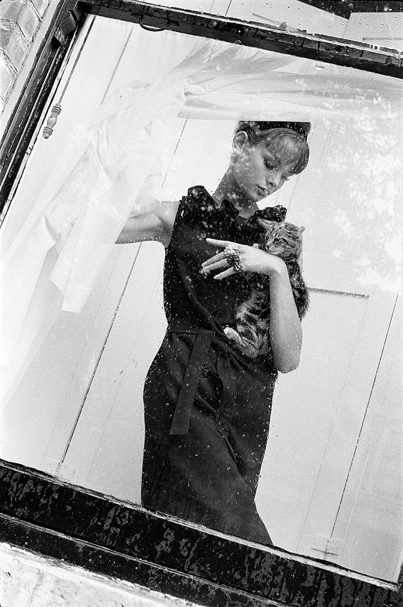 Jean Shrimpton with Cat