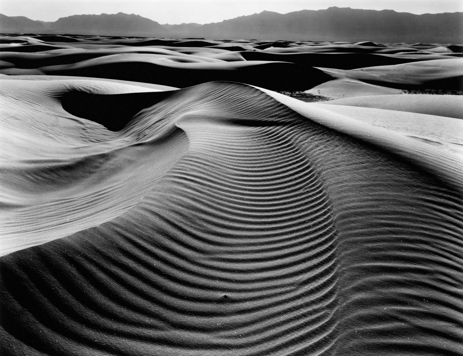 Dune, White Sands, New Mexico