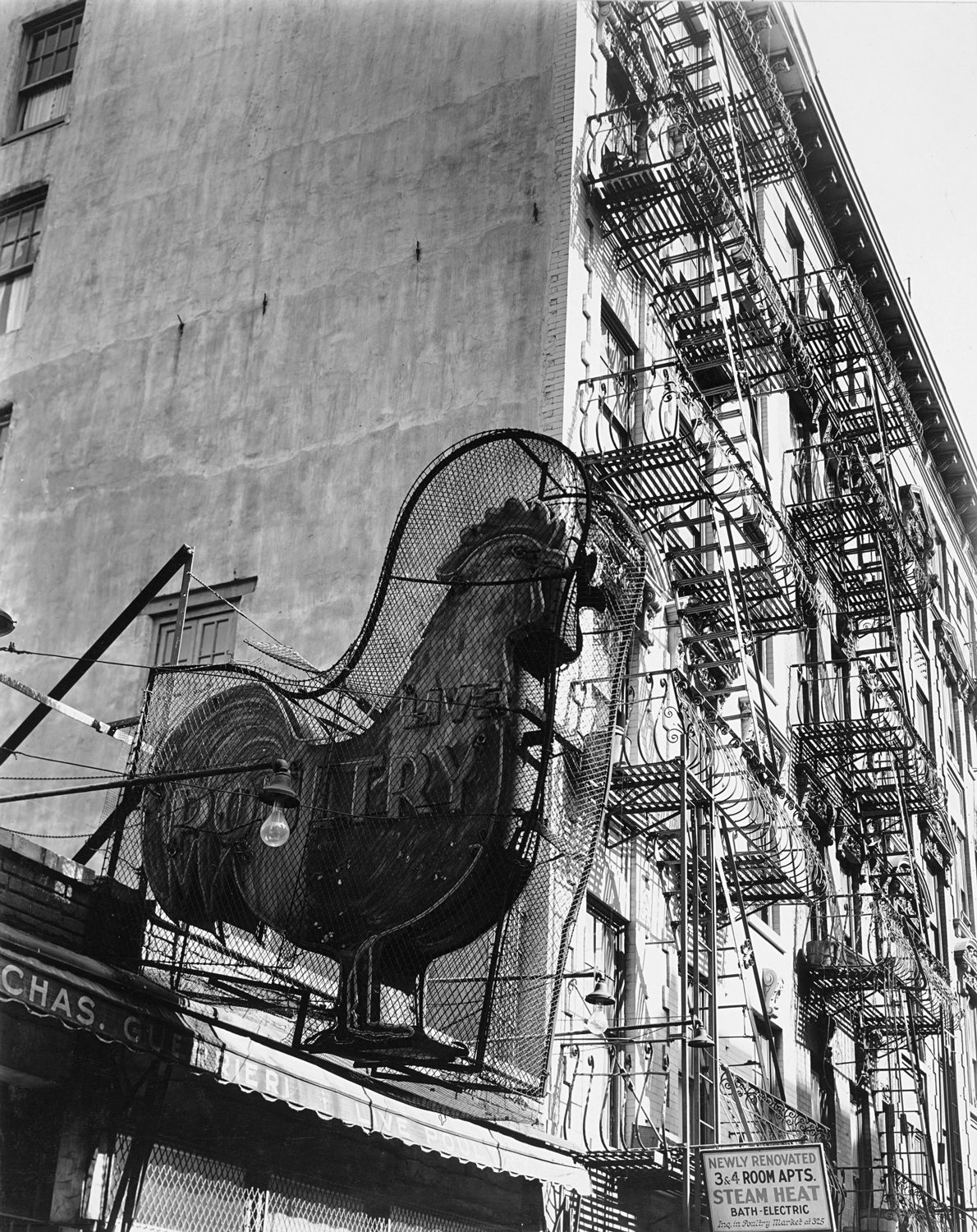 Poultry Shop, East 7th Street, New York