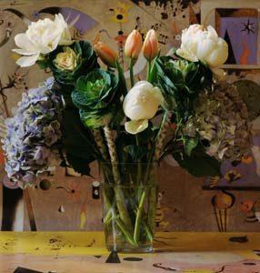 Miro Cabbage Hydrangea