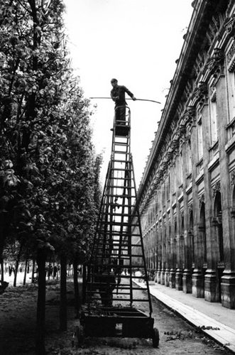 Street Ladder, Paris