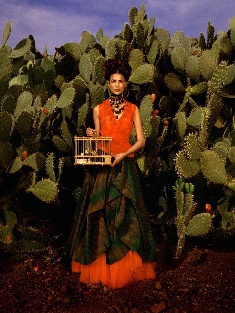 Frida Kahlo Story, 'Birdcage,' Marrakech, Morocco