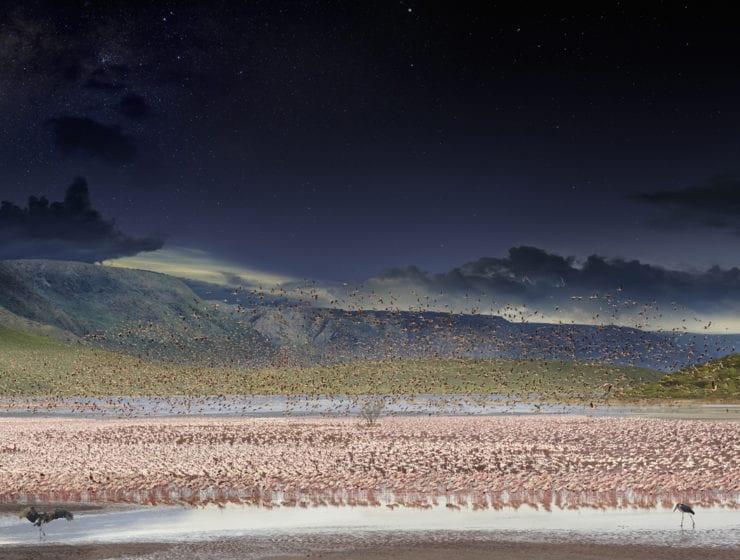 Stephen Wilkes, Flamingos, Lake Bogoria, Kenya (Day to Night)
