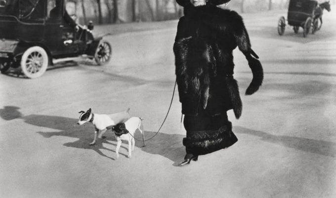 Jacques-Henri Lartigue, Woman With Fox Fur, Avenue Des Acacias