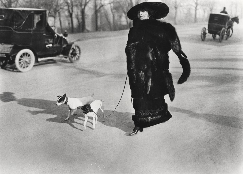 Jacques-Henri Lartigue, Woman With Fox Fur, Avenue Des Acacias