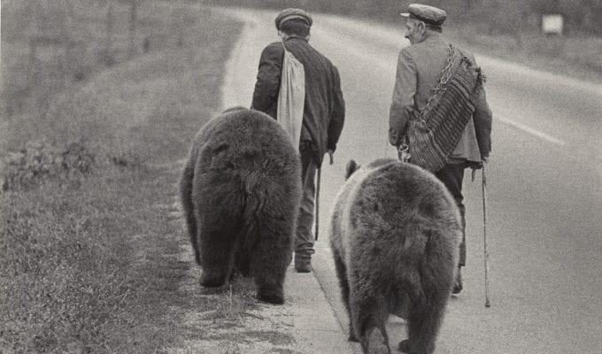 Jacko Vassilev, Gypsies from Village Yagoda with Dancing Bears, Bulgaria