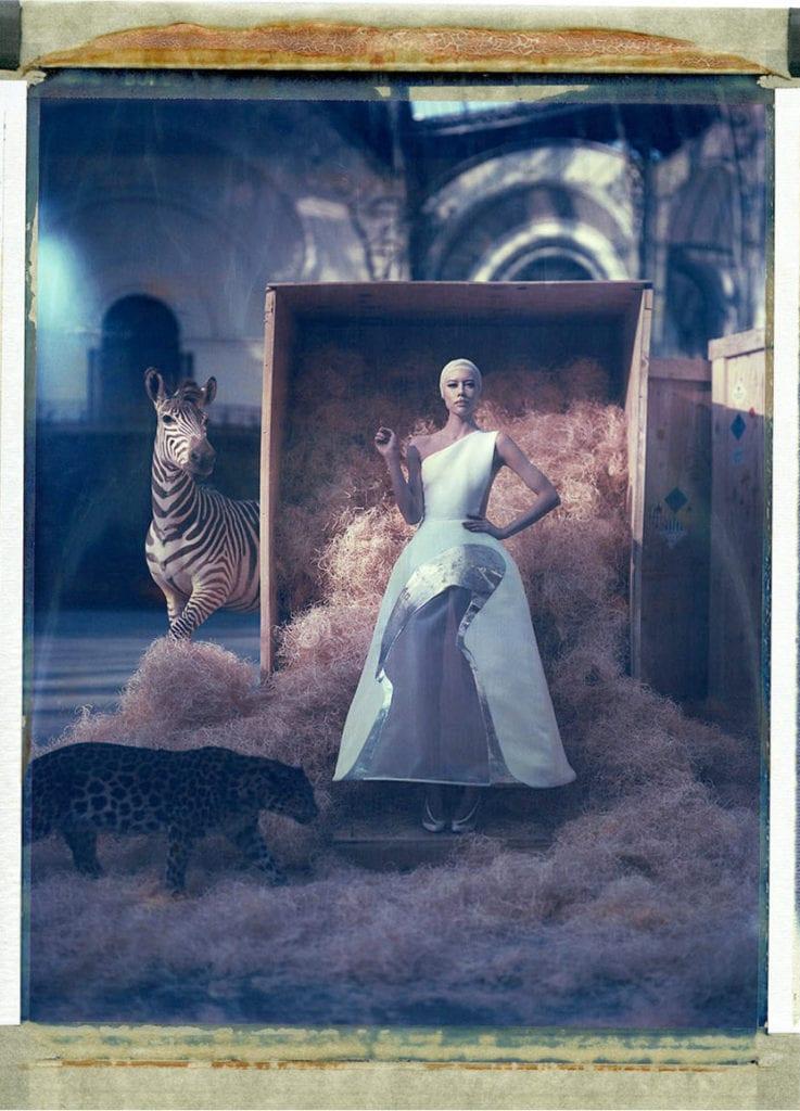 Cathleen Naundorf The Allure Of Beauty Holden Luntz Gallery