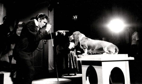 Alfred Wertheimer, Elvis Presley with Hound Dog