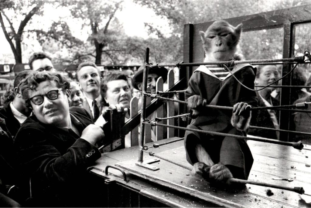 Robert Doisneau, Les Animaux Superieurs