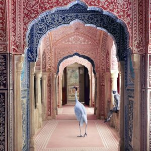 Karen Knorr, Avatars of Devi, Zanana, Samode Palace