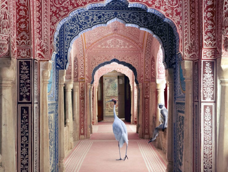 Karen Knorr, Avatars of Devi, Zanana, Samode Palace