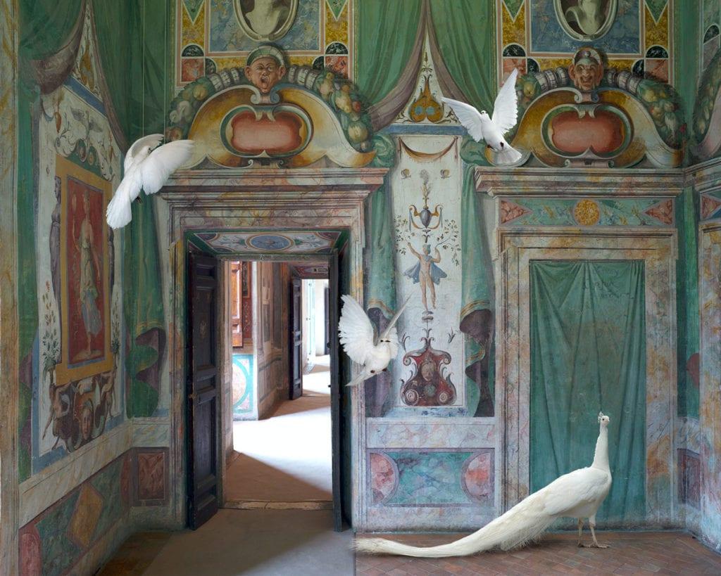 Karen Knorr, Immaculate Conception, Villa D'Este