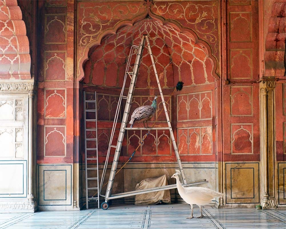 Karen Knorr, The One Spoken To By Angels, Jama Masjid Delhi
