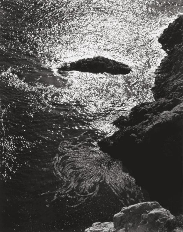 Edward Weston, China Cove