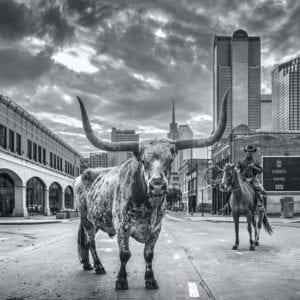 David Yarrow, A Dallas Cowboy