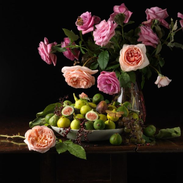 Paulette Tavormina, Roses and Figs