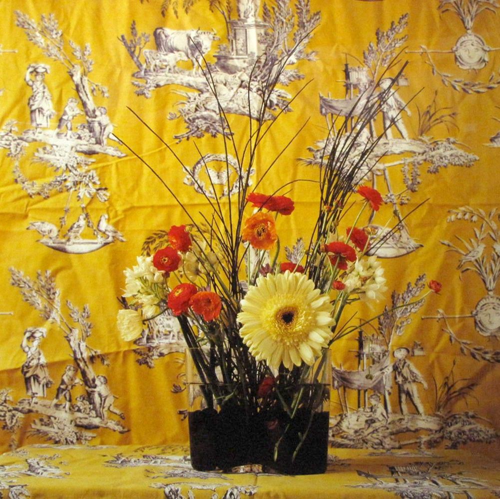 Ben Schonzeit, Aalto Yellow