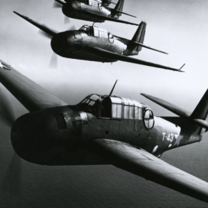 Horace Bristol, Torpedo Planes in formation over carrier during invasion of North Africa