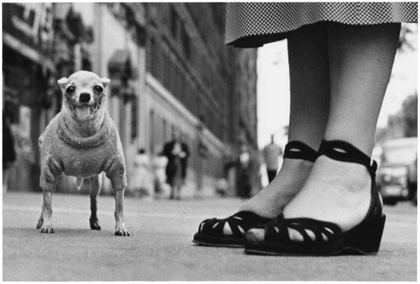 Elliott Erwitt, New York City, C. 1950