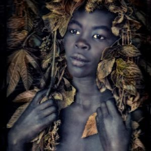 William Ropp, I Once Was a Tree II