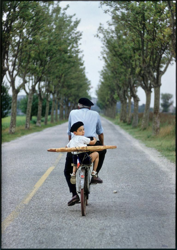 Elliott Erwitt, Provence, France, 1955