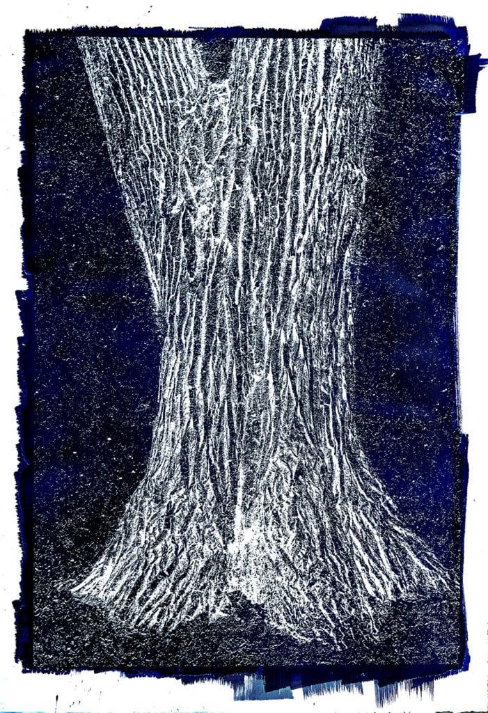 Michael Eastman, Cyanotype #33