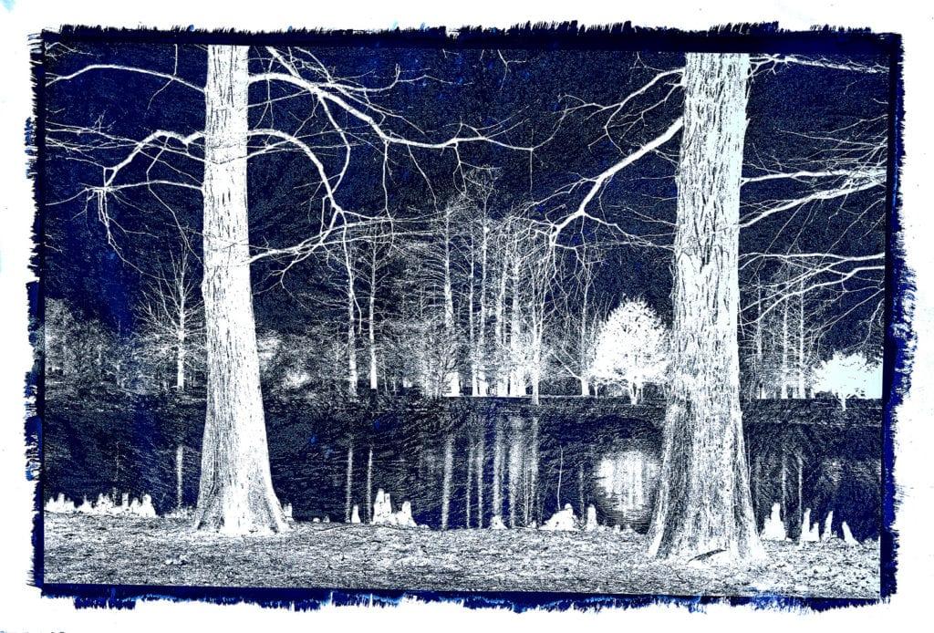 Michael Eastman, Cyanotype #21