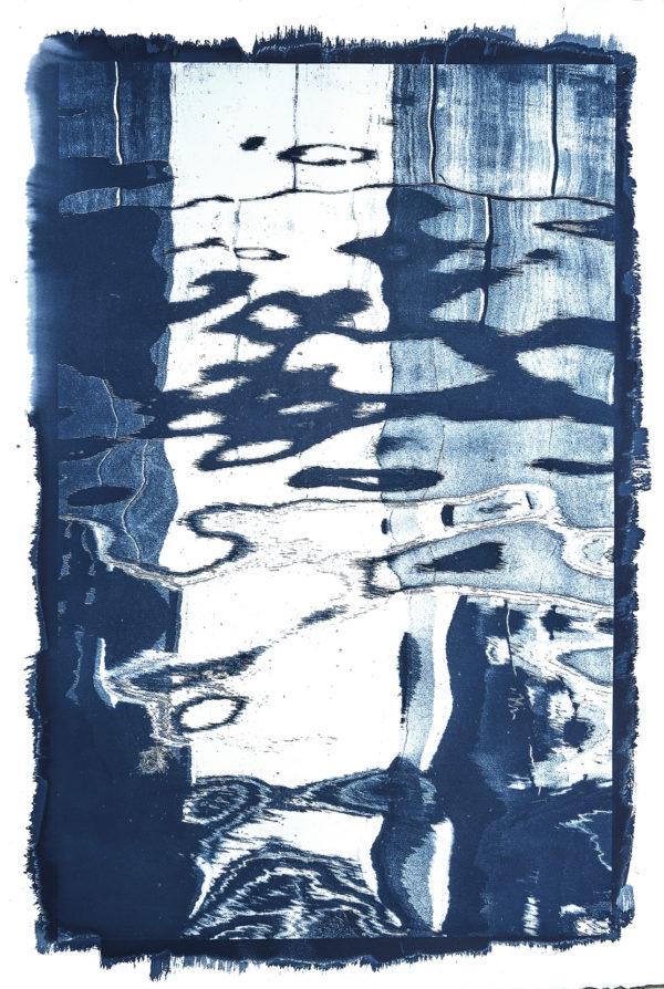 Michael Eastman, Cyanotype #18