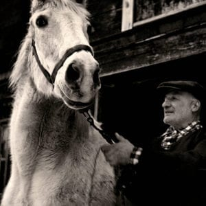 Todd Webb, Man With Horse